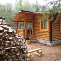 Породы дерева для строительства бани собственными руками
