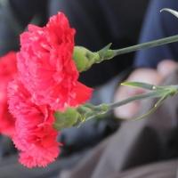 В Омске из жизни ушли два работника транспортной сферы