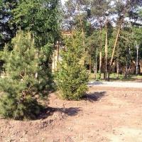 «Флора» 2017 дойдет до самой отдаленной территории Омска