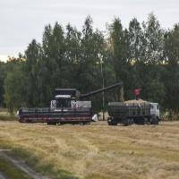 Омским аграриям стали раньше выдавать кредиты