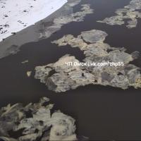 Омичи обсуждают непонятные образования на поверхности реки