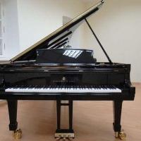 Омская «Шебалинка» купит роялей и пианино на 30 млн рублей