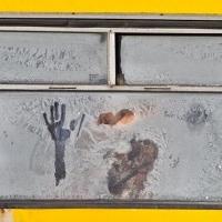Омичи не сильно жалуются в морозы на холод в автобусах
