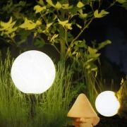Освещение — один из важнейших параметров для жизни