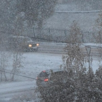 Пешеходов и водителей попросили быть внимательнее на омских улицах