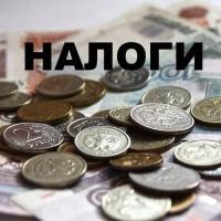 Омские бизнесмены и бюджетники выплатили 22 млрд рублей налогов