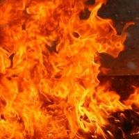 Под Омском огонь уничтожил животноводческий комплекс