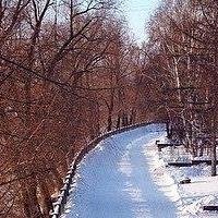 Омичи посоревнуются за звание лучшего спортсмена на гонке «Крутогорская лыжня»