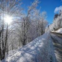 Дороги из Омской области в Казахстан открыты для движения