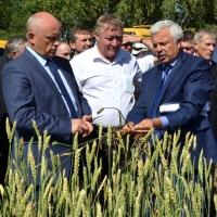 Аграрии Омской области намолотили первую миллионную тонну зерна