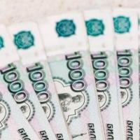 Омские предприятия АПК за первое полугодие уплатили 738 миллионов рублей налогов в бюджет РФ