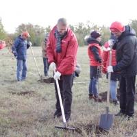 Волонтеры МТС посадили 100 новых саженцев на памятной аллее «Птичьей гавани»