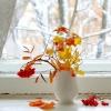 В Омске начало недели будет с мокрым снегом, прогнозируют синоптики