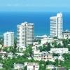 Какова ситуация с арендой квартир в Сочи посуточно?