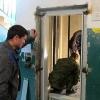 В 22 многоквартирных домах Омска поменяют лифты