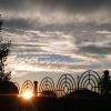 Синоптики прогнозируют возвращение жары в Омскую область