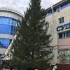 Праздник к нам приходит: в Омске установили еще одну елку