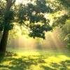 В Омске солнечную субботу сменит дождливое воскресенье