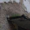 Проверку по факту расхищения исторического здания проводят полицейские по обращению мэрии