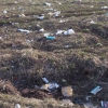 Омская прокуратура будет следить, как устраняют свалки в Нововаршавке