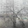 В Омской области прошел майский снегопад