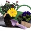 Добраться до садовых товариществ стало проще
