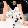 Самые крутые роботы планеты уже в Омске