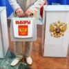 Информировать избирателей перед выборами губернатора Омской области готовы за 4,5 млн рублей