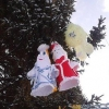 Омичей приглашают на веселую и спортивную новогоднюю елку