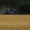 Переувлажнение почвы в Омской области привело к режиму ЧС