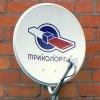 Российское авторское общество засудило «Триколор ТВ»