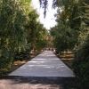 Что бы вы хотели изменить в городских парках?