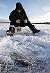 Формула души: рыба, заяц, снегоход