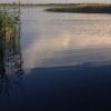 В одном из котлованов Омска утонула женщина