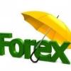 Заработок на Форексе: реальная возможность заработать