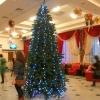 Бурков распорядился не проводить Губернаторскую елку в музтеатре