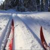 Сад Комиссарова пригласил омичей на лыжную прогулку