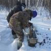 В Омской области дикие животные начали есть с рук