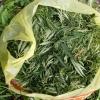 Омич собрал наркосодержащее растение на обочине, но до дома донести не успел
