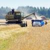 Омские аграрии за неделю очистили от зерна треть полей