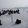 Рыболовов пустили на лед