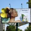 Почему реклама на билбордах выгодна локальному бизнесу?