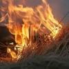 Дети сожгли 4 тонны соломы в Омской области