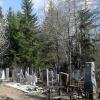 На омских кладбищах обитают клещи