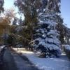 В Омске всю неделю минусовая температура