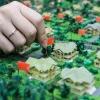 Жители Омской области могут увеличить свои земельные участки