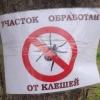 С начала сезона клещи покусали 830 жителей Омской области