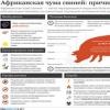 Омские фермеры скрывали вспышку чумы
