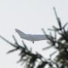 В Омском аэропорту стали круглосуточного измерять шум
