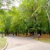 На публичных слушаниях омичи подняли вопрос об образовании сквера по улице Мельничной